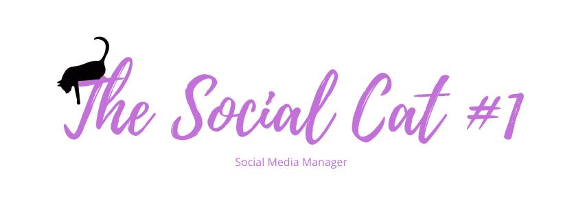 The Social Cat
